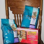 Image of cat supplies kitten food