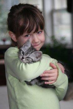 Image of girl in green shirt snuggling sleepy American shorthair silver tabby kitten