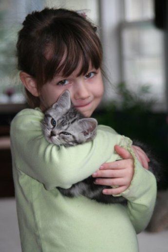 Image of girl in green shirt snuggling sleepy American shorthair silver tabby kitten