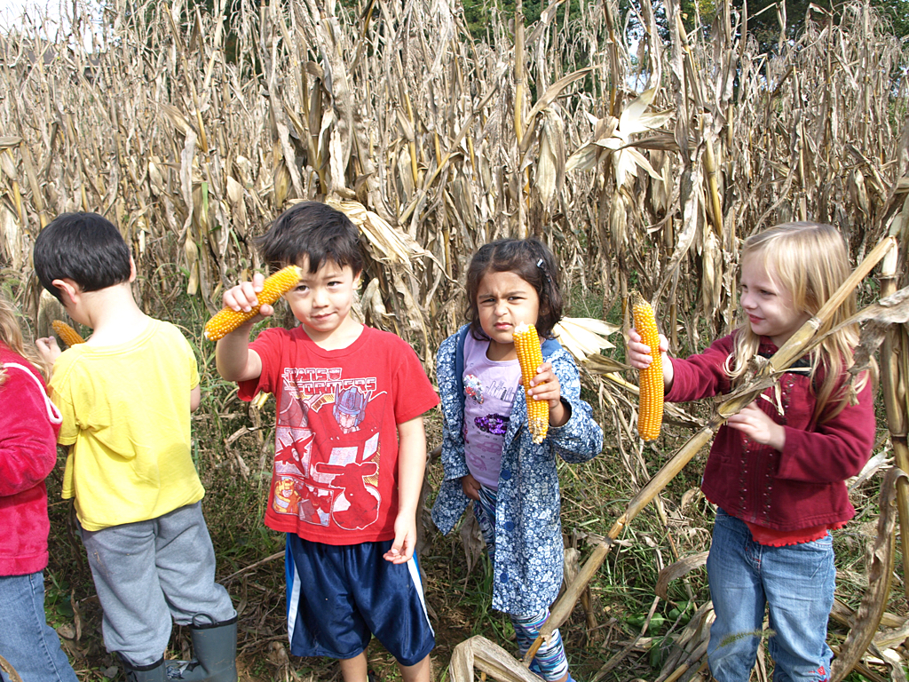 Field Trips Help Us Welcome Fall With New And Old Friends