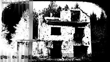 Crno i bijelo foto 13