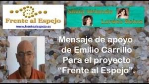 Emilio Carrillo ha sido Vice Alcalde de Sevilla, Vicepresidente de la Diputación Provincial y profesor de economía política durante más de veinte años en la Facultad de Derecho de Sevilla. Tuvo un...