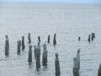 Wooden statues at Centre d'art Marcel Gagnon