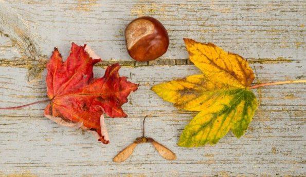 постни манджи за есента