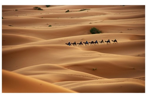 A Party of riders in the Sahara