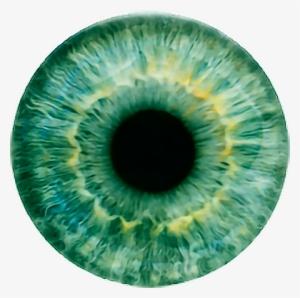 Eye Lens Png Image Hd | Daily Health