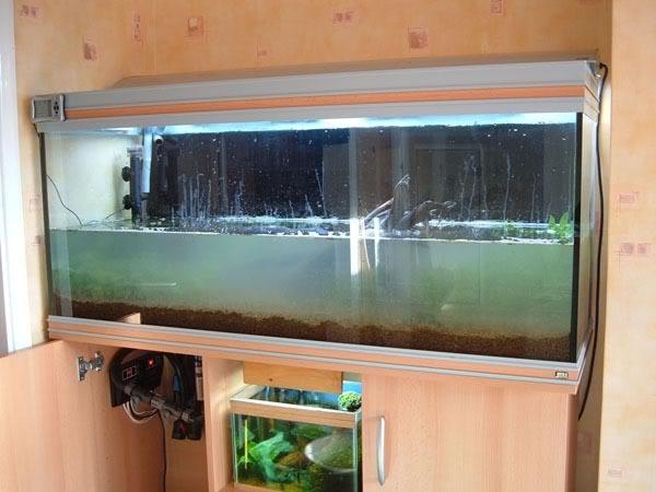 赤玉土的設缸過程 | 香港水族網