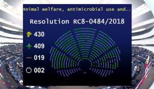 El Parlamento Europeo pide limitar el uso de antibióticos en granjas para evitar resistencias