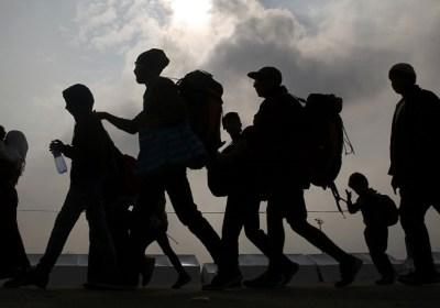 De la Migración Forzada a la Regeneración