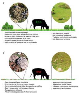 Antiparasitario de uso generalizado en ganadería puede afectar a la fauna edáfica