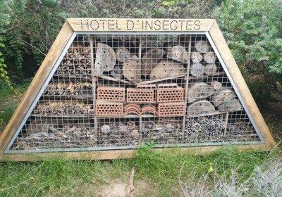 Cómo construir un hotel de insectos para la huerta