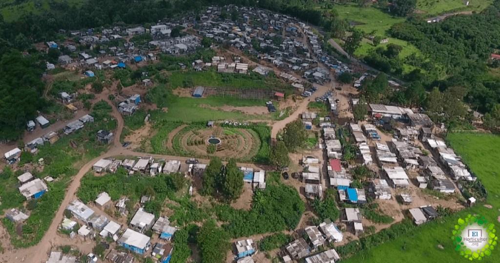 Convierten cancha de fútbol en huerta orgánica para alimentar a 1,000 familias