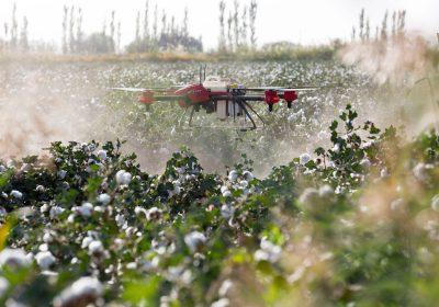 Un nuevo estudio revela un aumento espectacular de las intoxicaciones por plaguicidas a nivel mundial