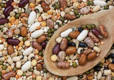 La agricultura temprana de porotos en los Andes preservó la diversidad genética de las semillas
