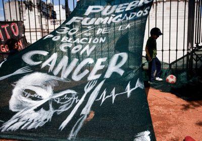 La Sociedad Argentina de Pediatría confirmó el daño que producen los agrotóxicos en los niños