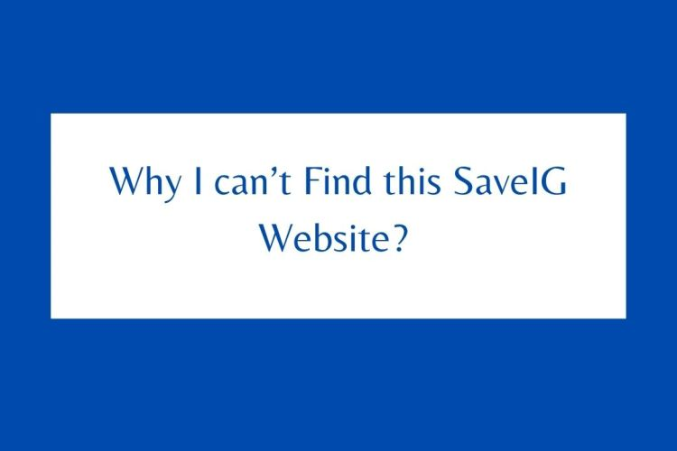 Why I can't Find this SaveIG Website