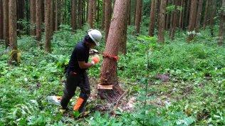 2017 林業講座 第5回