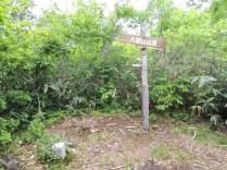 カヤの平 八剣山