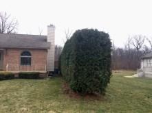 Simlawn LLC Landcaping Girard Ohio