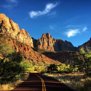 Bicycle road in Zion National Park.