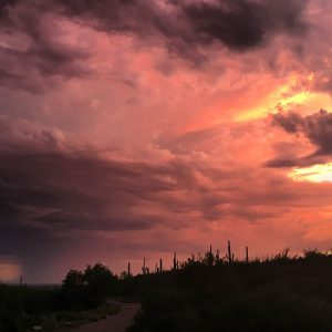 Saguaro National Park East ridge, with summer storms and sunset.