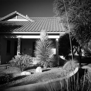 Classic black-and-white view for a classically gorgeous neighborhood.