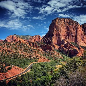 The road into Kolob Canyons at Zion National Park.