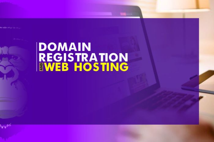 Reliable and Affordable Web Hosting – Rilla Web Hosting