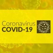 Simmyideas Regarding COVID-19