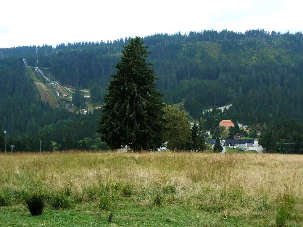 westweg-ruhestein