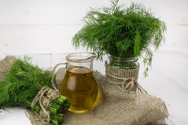 10 plante care ajuta la ingrijirea tenului - marar