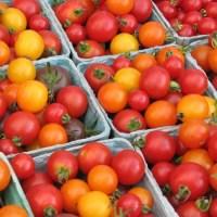 Pătlăgelele roşii sunt legume! – aşa a decis Curtea Supremă a Statelor Unite