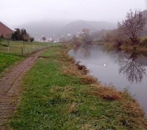 Der kleine, weiße Punkt auf dem Wasser: Das ist die Ente.
