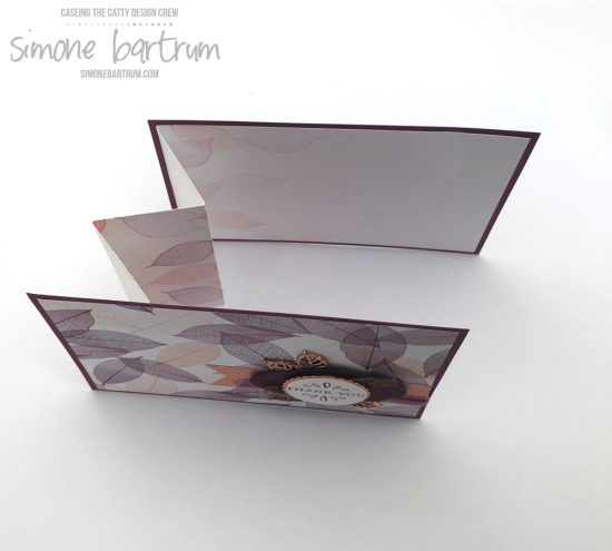 Instructions for this accordion insert fold at https://simonebartrum.com/cards/fancy-accordion-fold-insert/