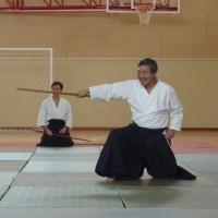 Cos'è l'Aikido
