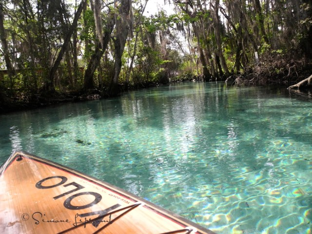 My SUP board and I floated in Three Sisters Springs