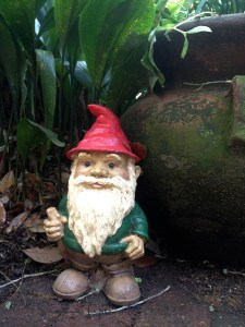My daughter and future son-in-law's birthday garden gnome...watching over my courtyard.