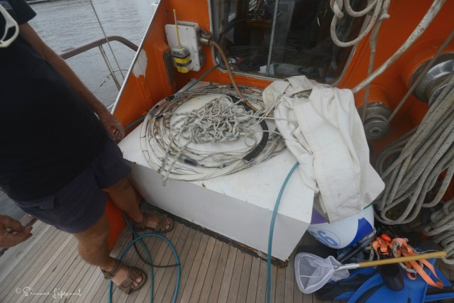 Hydrophone cable is pulled behind the vessel and the crew listens for the very loud click...click...click of sperm whales to determine location