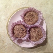 Berry & Vanilla Protein cupcakes