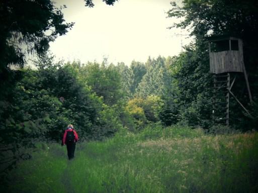 Forsthaus auf dem Westerwaldsteig