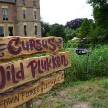 9. Cursus Wildplukken