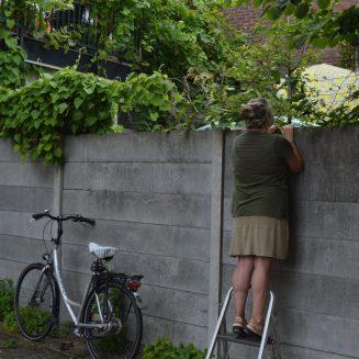 Buurvrouw piept over de muur - Foto Simone Vos