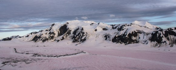 Icefall Peak - Canwell Glacier covered by red algae