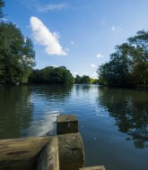 Alexandra Palace boating Lake 2