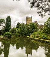 A Picture of Wells cathedral 2