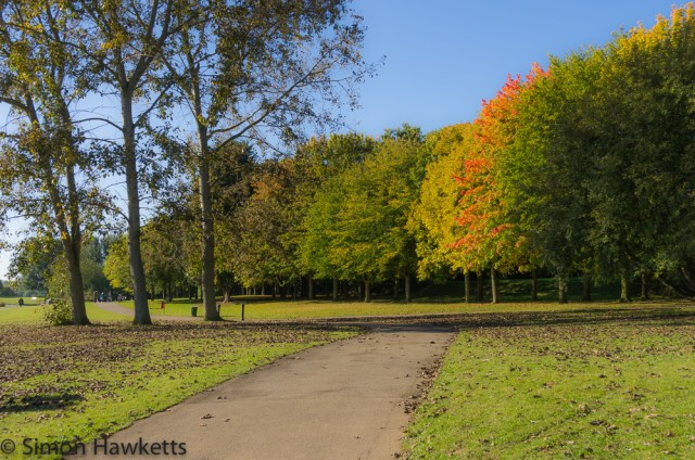 Fairlands valley park in Stevenage 8