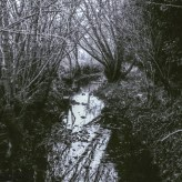 Yashica MG-1 sample pictures - A stream in Stevenage