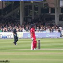 Lords cricket ground - Cook at the crease