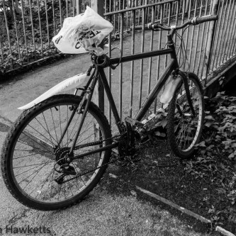 Ricoh GXR first pictures - Black & White Bike