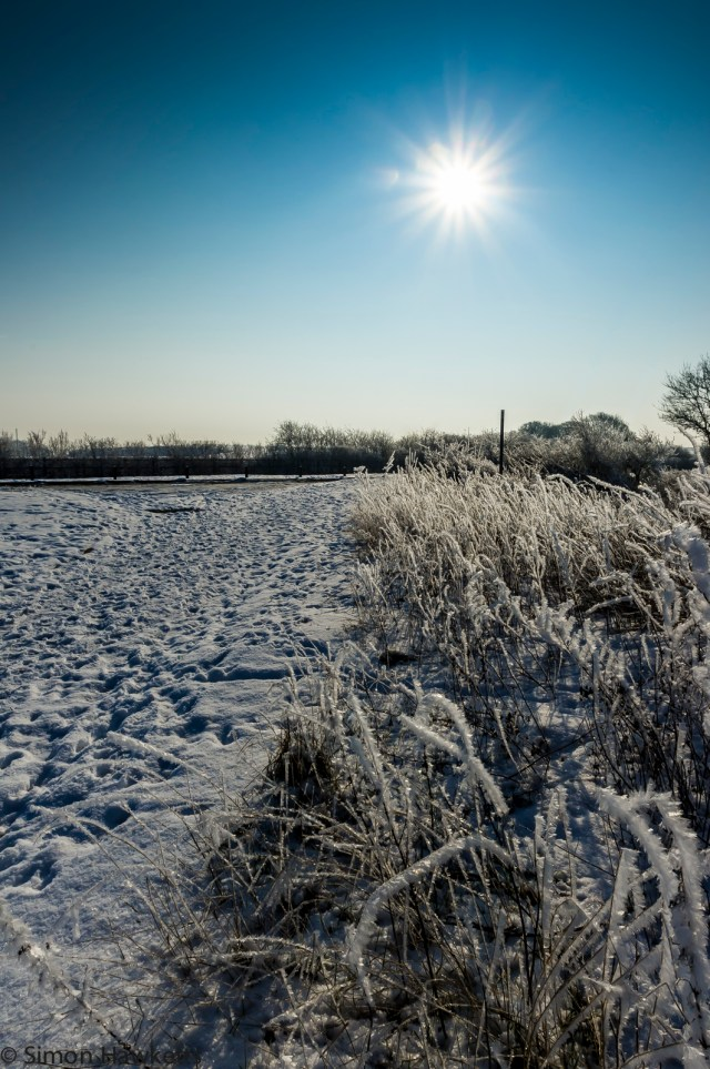 Sunshine and snow 1